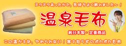 2012温泉毛布.jpgのサムネイル画像のサムネイル画像